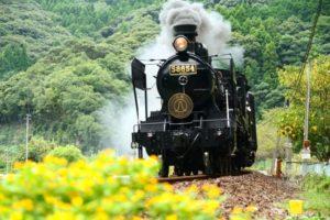 日本最古の現役蒸気機関車どこ?乗れる場所はあるの?蒸気機関車の仕組みは簡単!